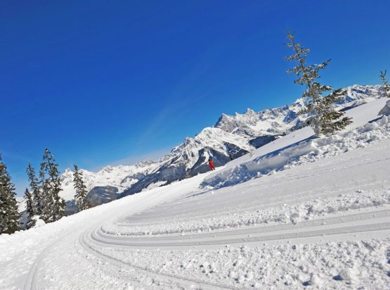 Langlaufen - Winterurlaub - Radstadt