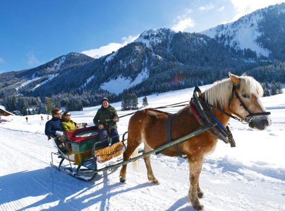 Pferdeschlittenfahrt - Winterurlaub - Radstadt